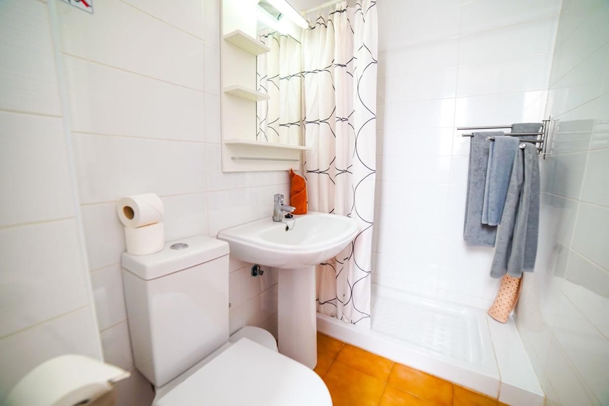 Mozart_toilet